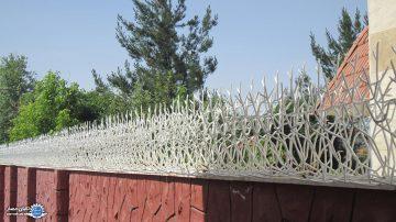 حفاظ شاخ گوزن | مشاوره رایگان 09143092878