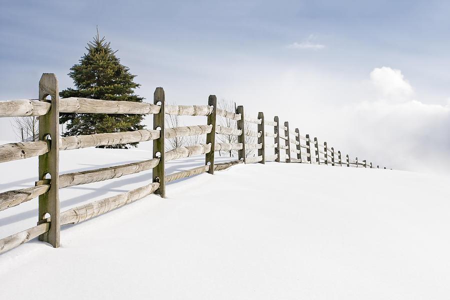 فصل خوب برای نصب حصار