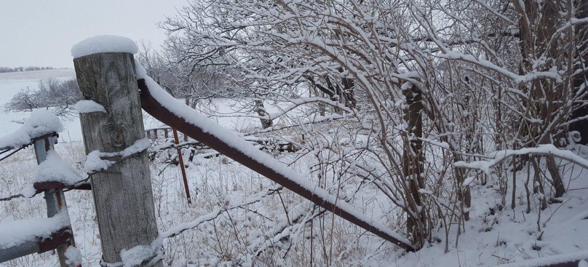 محافظت حصار چوب آب و هوای زمستانی